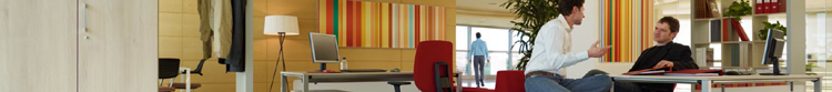 Büro mit Akustikpanelen 750 x 83