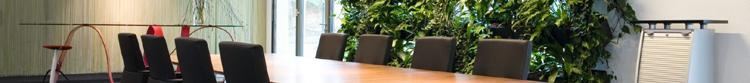 Konferenz Pflanzenwand 750 x 83